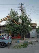 عملیات شاخه زنی درختان مجاور شبکه توزیع برق در شهرستان پاوه اجرا شد